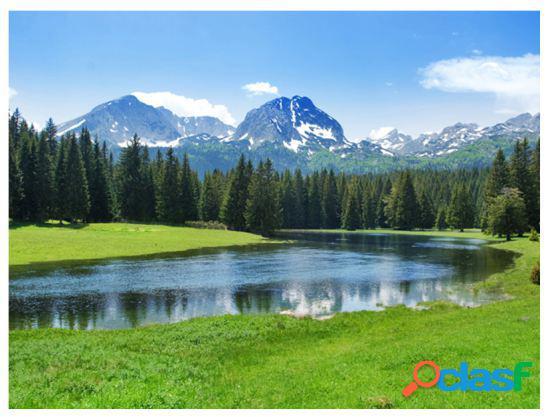 Artgeist Fotomural National Park Durmitor Montenegro 200x154