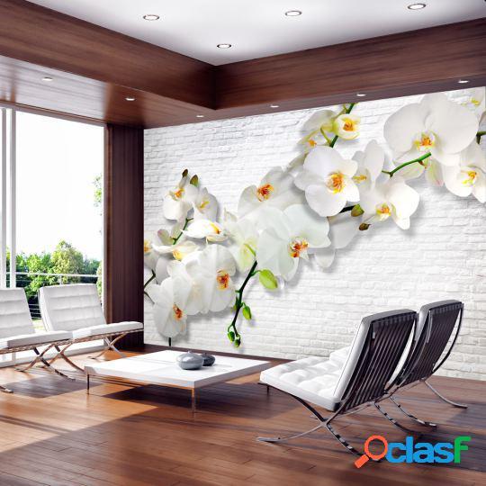 Artgeist Fotomural Orquídeas en la pared 150x105 cm