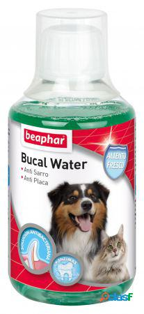 Beaphar Bucal Water 250 ml