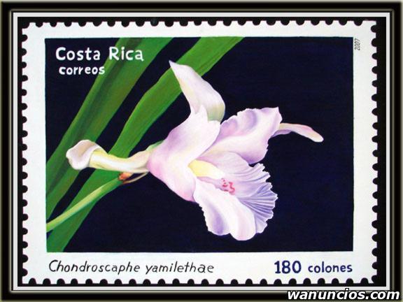 Compro sellos de América - Cádiz