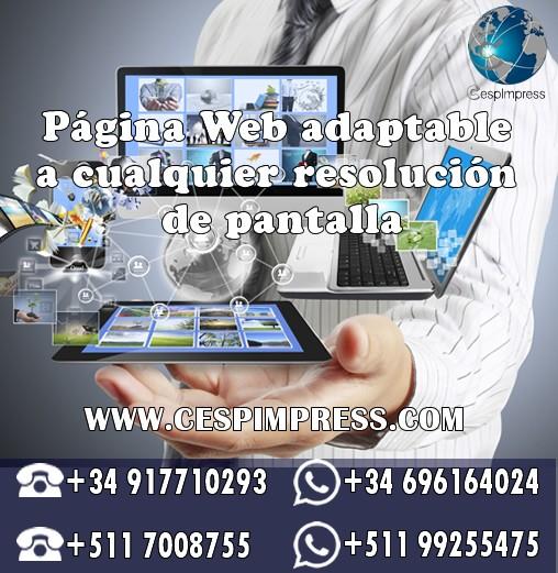 : Diseño Web y Marketing Digital - Madrid