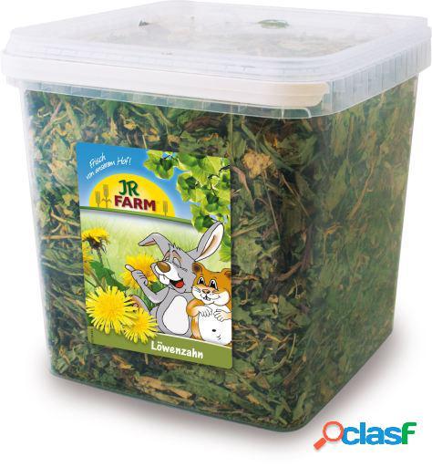Jr Farm Cubo con Diente de Leon 400 GR