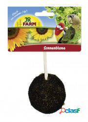 Jr Farm Jr Birds Girasol 30 GR
