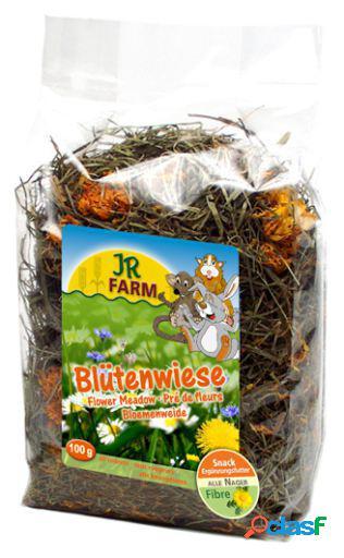 Jr Farm Snacks Flores De Pradera 100 gr