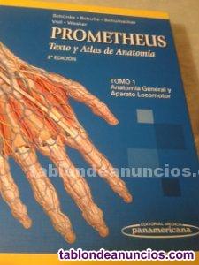 Prometheus libro de texto y atlas de anatomía 2º edición