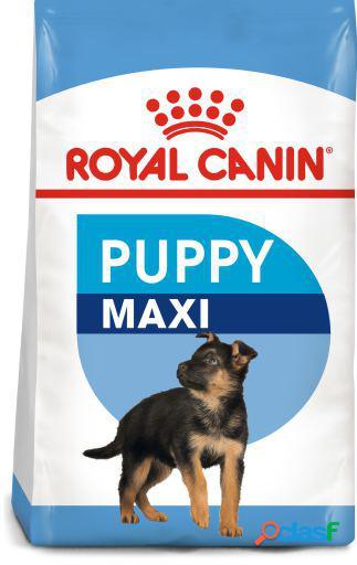 Royal Canin Maxi Puppy 10 KG