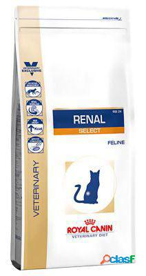 Royal Canin Pienso Renal Select Feline 4 KG