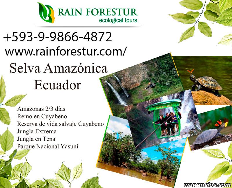 Selva amazoinca ecuador - Barcelona