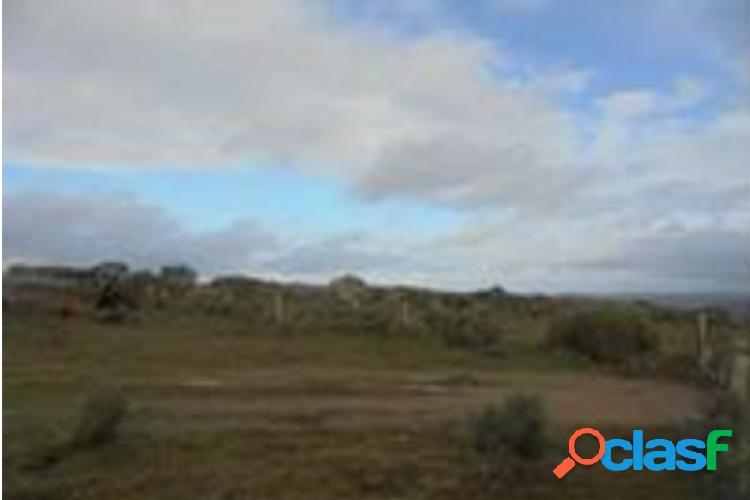 Urbis te ofrece una finca rústica en Villar del Ciervo