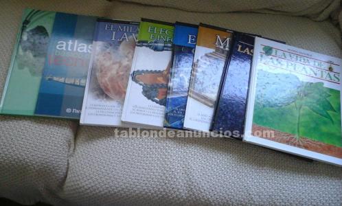 Vendo lote 7 libros editorial parramon (ciencias y