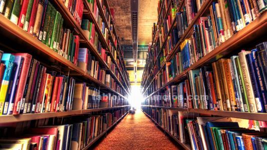 Se venden libros leídos una sola vez, pregúnteme por favor