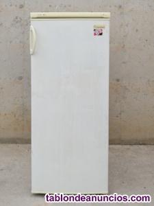 Congelador vertical eurotech