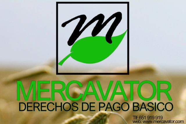 DERECHOS PAC DE PAGO BÁSICO (PAGO ÚNICO)