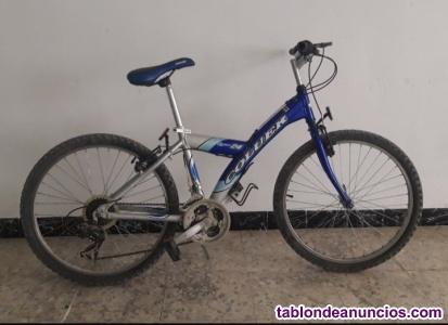Se vende bicicleta coluer y-type 24