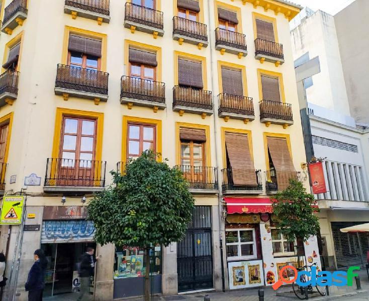 Apartamento en pleno centro de Granada, junto calle gran