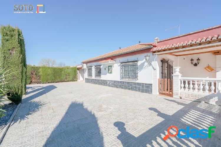 Casa de campo en plena vega de Granada