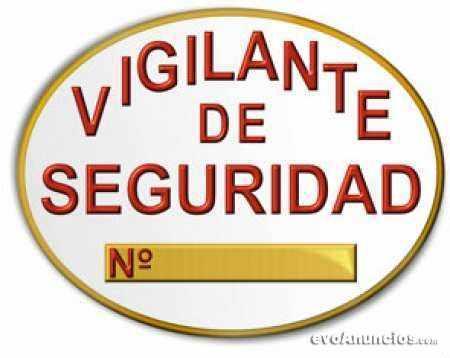 VIGILANTE DE SEGURIDAD, ESCOLTA PRIVADO, VIGILANTE DE