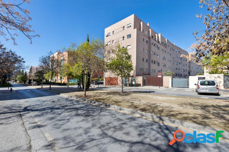 Piso de 3 dormitorios en zona Alcampo - Joaquin Eguaras
