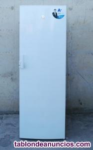 Congelador vertical balay a+ 244 litros