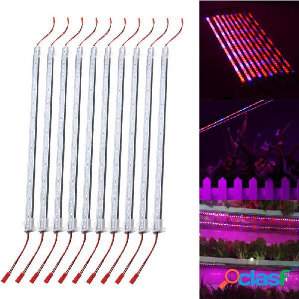 10PCS 50CM SMD5730 Rojo: Azul 5: 1 LED Planta Kit de luz de