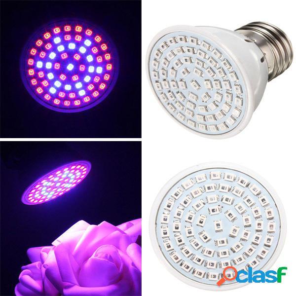 41 rojo 19 azul LED crecer planta de luz luz de la planta de