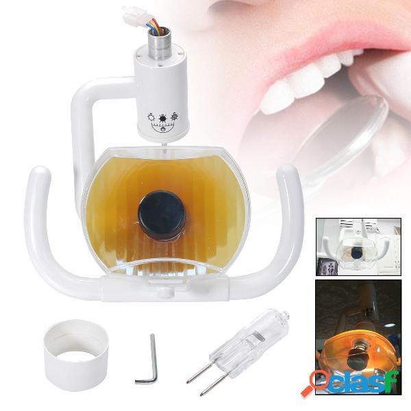 50W Dental Luz fría oral sin sombras Lámpara para la