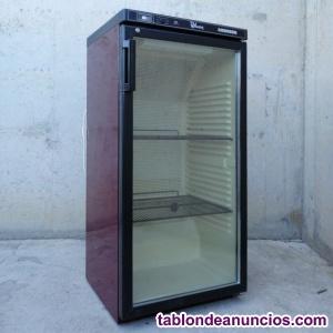 Vinoteca liebherr 232 litros