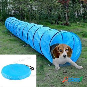 Pet Dog Agility Obedience Training Túnel Pet Channel Perro