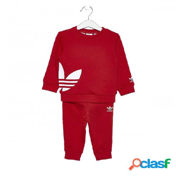 Chandal Adidas Big Trefoil Crew 6-9m Rojo