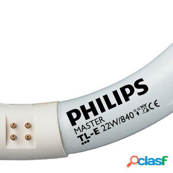 Philips TL-E Circular Super 80 22W 840 (MASTER) | Blanco