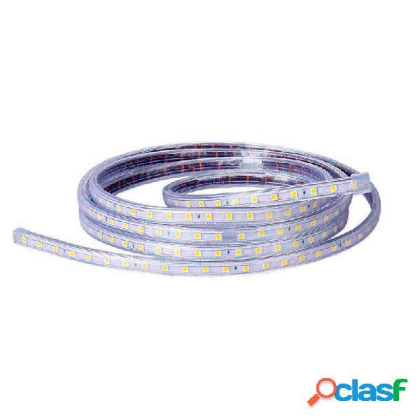 Tira led 220v smd5050 60led/m 1 metro blanco frío