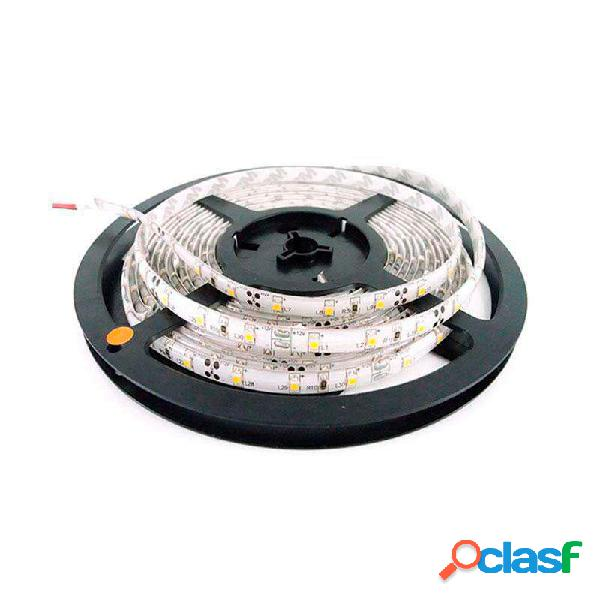 Tira led basic smd5050 dc12v 5m (60 led/m) - ip65 rojo