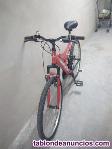 Bicicleta de montaña – 26 pulgadas