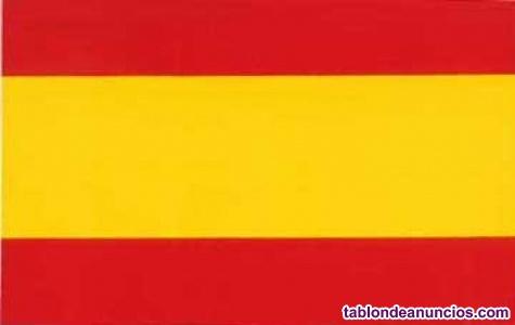 Doy clases de español on line