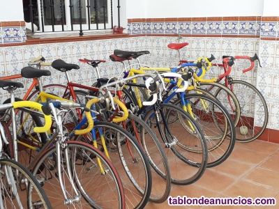 Vendo bicicletas, gran variedad de marcas.