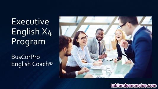 Executive English X4 Program For ESL - EFL Professionals