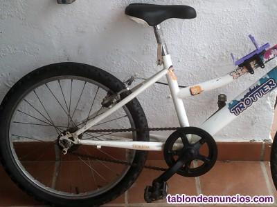 Bicicleta troter en buen estado muy barata