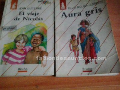 EL VIAJE DE NICOLAS y AURA GRIS