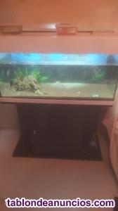 Acuario de 200L marca Eheim con mesa de acuario y filtro