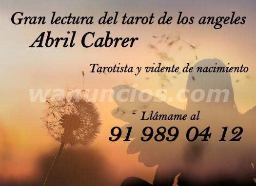 Tarot de los ángles y videncia - Madrid