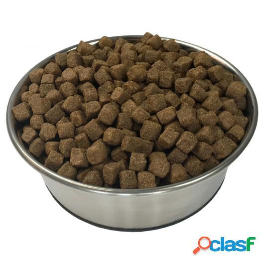 Comida seca para perro Adult Active Chicken &amp Fish 2 uds