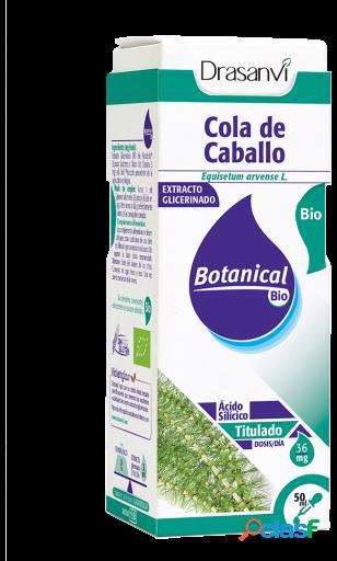 Drasanvi Glicerinado Cola Caballo 50ml botanical bio