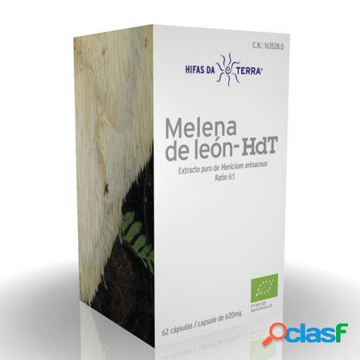 Hifas Da Terra Mico Leo Melena de Leon Hdt 62 cápsulas