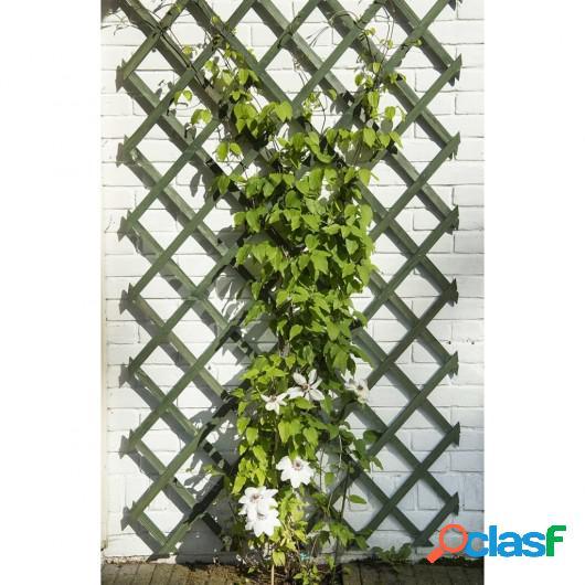 Nature Enrejado de jardín madera verde 2 unidades 50x150 cm