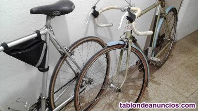 Vendo bicicleta de carretera marca Razesa