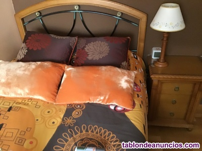 Vendo dormitorio juvenil de madera maciza.