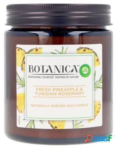 Air Wick Botanica Vela Pineapple & Tunisian Rosemary 205 gr