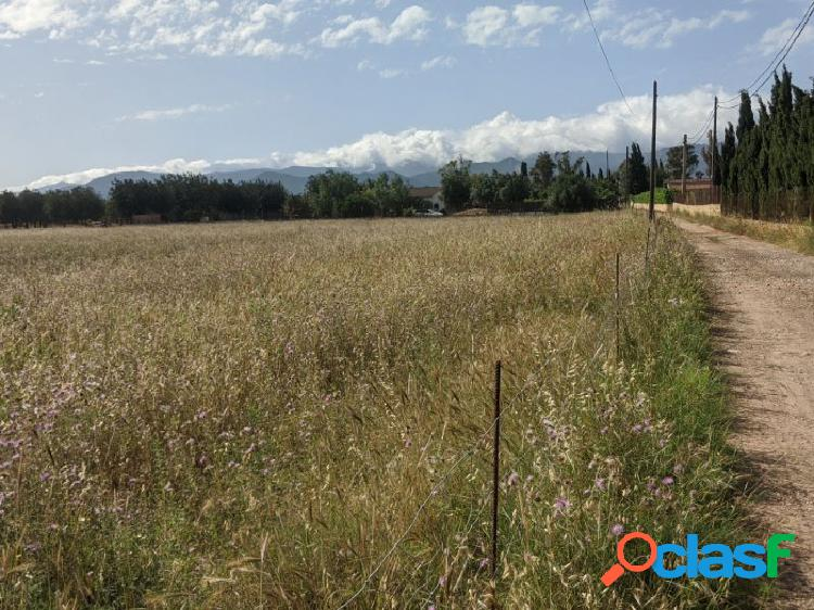 Bien ubicado terreno edificable en zona de Viñedos, entre