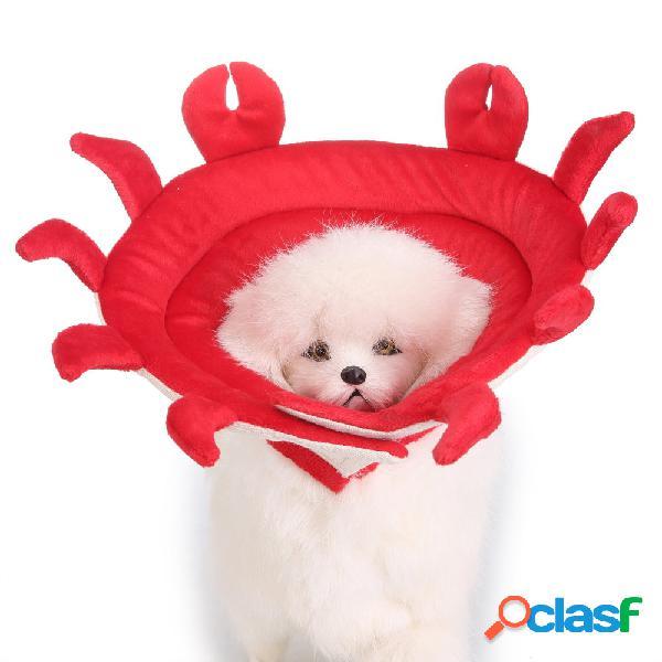 Crab Shape Dog Cat Collar Pet Elizabeth Circle Wound