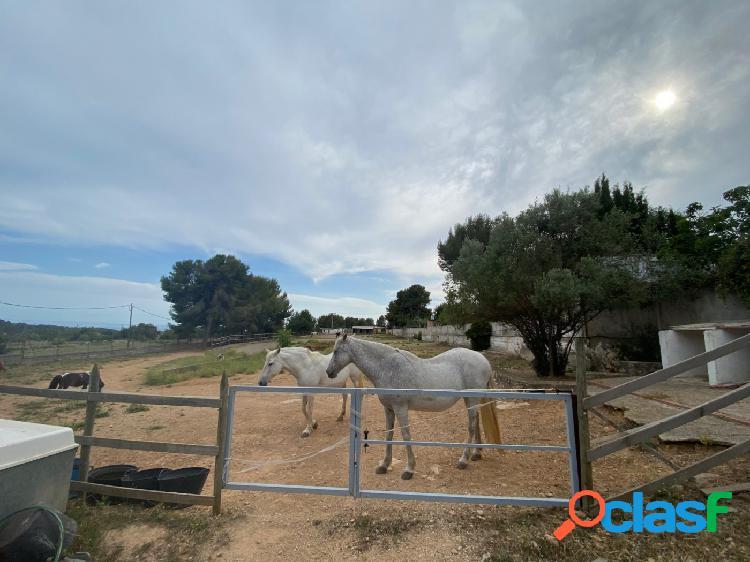 Finca rustica con vistas al mar a la venta en Vilanova i la